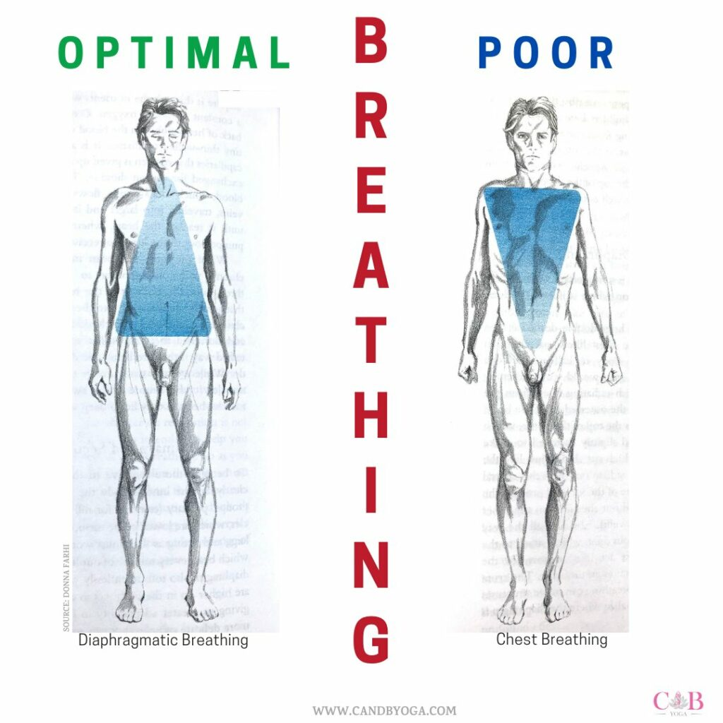 BREATH HEALTH C and B Yoga